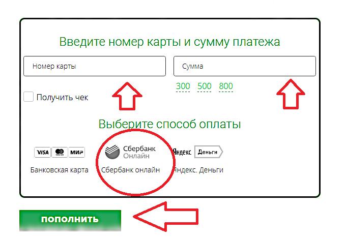 пополнить счет Зонателеком через Сбербанк онлайн